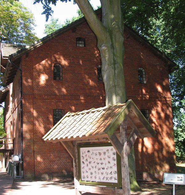 Wassermühle Ostseite